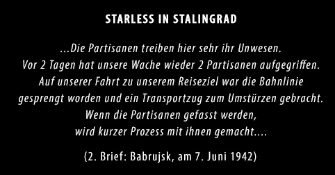 SIS-Img02_Brief02_Starless-in-Stalingrad-Dokumentarisches-Labor_Partisan