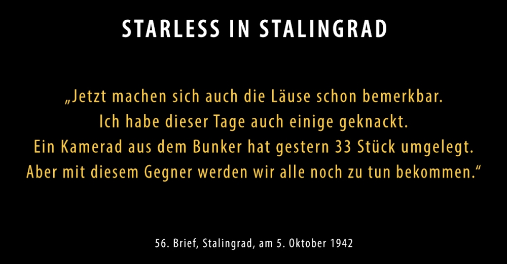 SIS-Brief56-neu_Starless-in-Stalingrad-Dokumentarisches-Labor Kopie.jpg