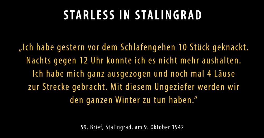 SIS-Brief59-neu_Starless-in-Stalingrad-Dokumentarisches-Labor.jpg