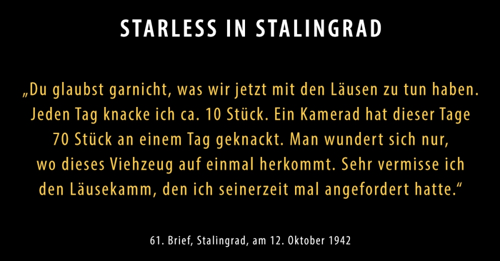 SIS-Brief61-neu_Starless-in-Stalingrad-Dokumentarisches-Labor.jpg
